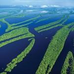 Anavilhanas Nemzeti Park – a Föld egyik legnagyobb édesvízi szigetvilága