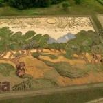 Élő van Gogh festményt formáltak egy 1,2 hektáros mezőn