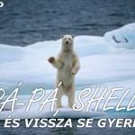 Győzelem! Levonul a Shell az Északi-sarkvidékről