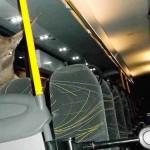 Egy szarvas csapódott a szélvédőn keresztül egy osztrák buszba