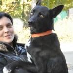 300 kilométert gyalogolt egy kutya, hogy újra szeretett gazdájával lehessen