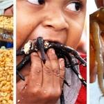 Photo: A 20 legbizarrabb étel a világ minden tájáról