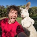 A legkülönfélébb állatokkal készít aranyos szelfiket egy ír fotós