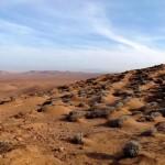 Felderítették az Atacama-sivatag ködének történetét