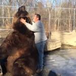 Egy hatalmas medve és egy férfi különleges barátsága