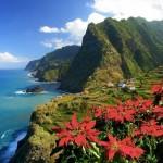 A csodálatos Madeira – az örök tavasz szigete