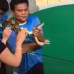 Orron harapott egy turistát egy piton egy thaiföldi kígyóshow közben