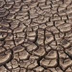 Katasztrófa fenyegeti Zimbabwét a rendkívüli szárazság miatt