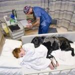 A kórházi ágyán sem hagyta magára hűséges kutyája az autista kisfiút