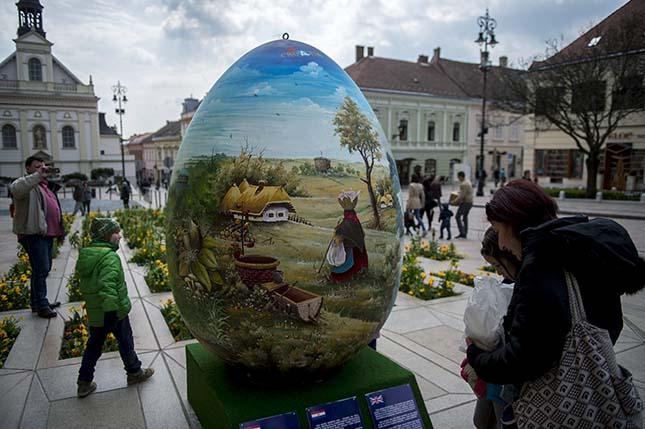 Óriás hímes tojás Pécsen