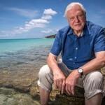 Rajzversennyel és cápás rendezvénnyel ünnepli a Viasat Nature Sir David Attenborough 90. születésnapját