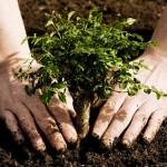 Ma van a Föld napja – ismerd meg a kezdeményezés történetét