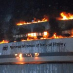 Megsemmisült a delhi Természettudományi Múzeum teljes gyűjteménye egy tűzvészben