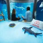 Cápákkal teli akváriumban tölthetnek el egy éjszakát egy verseny nyertesei