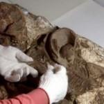 Gyermekét ölelő anya 4800 éves fosszíliájára bukkantak