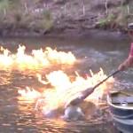 Felgyújtotta a folyót a zöldpárti politikus [videó]