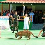 Lelőtték a riói fáklyás ünnepségen mutogatott jaguárt