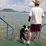 Két kutyabarát fürdőhely nyílik a Balatonon