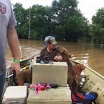Több mint 40 kutyát mentett ki az árvízből egy texasi család