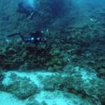 Egy éven belül 45 hajó roncsát találták meg egy görög szigetnél