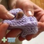 Eddigi legapróbb betegéről gondoskodik egy ausztrál állatkórház