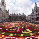 Ismét virágszőnyeggel borították be Brüsszel főterét