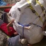 Photo: Rendkívül jó állapotban megmaradt T. rex fosszíliára bukkantak Amerikában