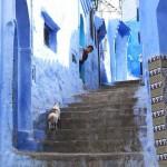 Barangolás Marokkó kék városában