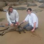 Photo: Bátor szakácsok mentették ki az óceánból a fuldokló kengurut