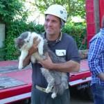 Photo: 32 nappal az olaszországi földrengés után élve emeltek ki a romok alól egy macskát