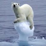 Most a legmelegebb a Föld az elmúlt 115 ezer évben