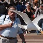 Photo: Tökéletes pillanatban elkapott utcai fotók