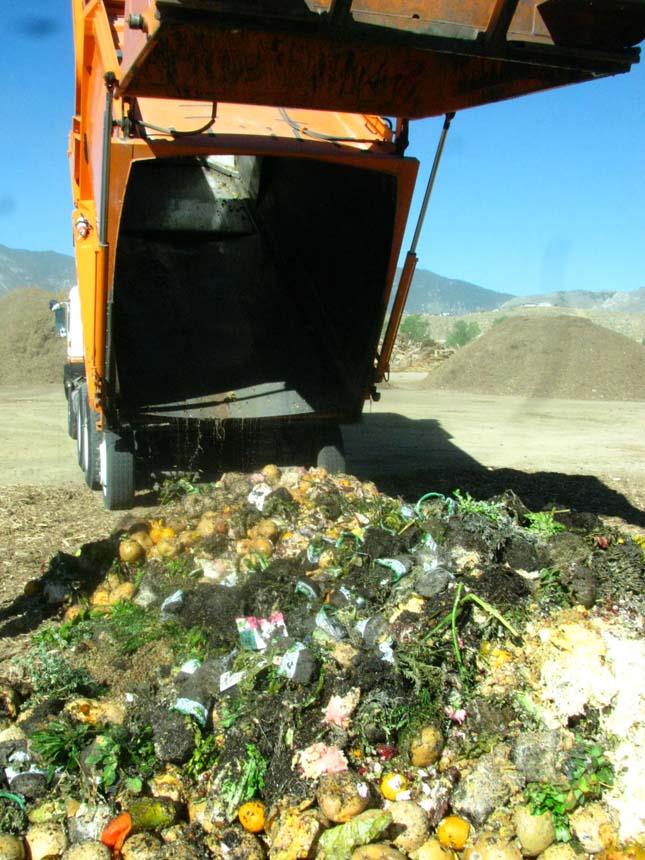 food-waste-2