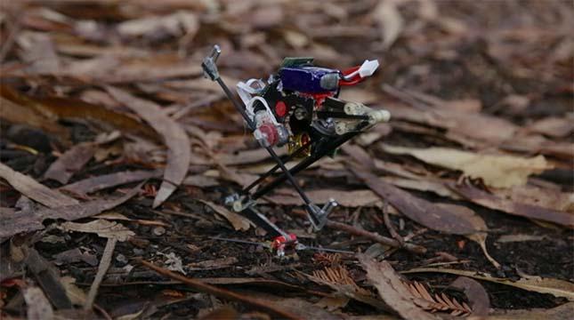 salto-robot
