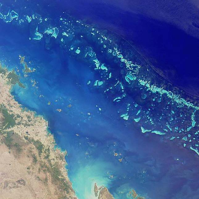 barrier-reef