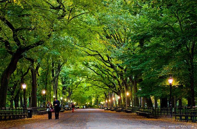7 csodálatos park