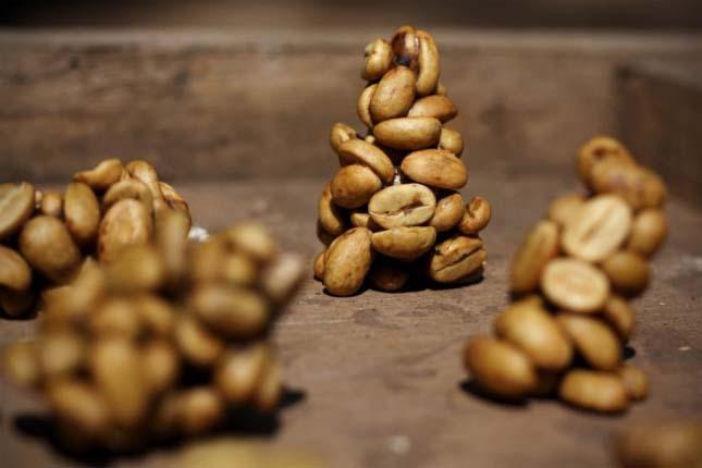A világ legdrágább kávéja - Kopi Luwak