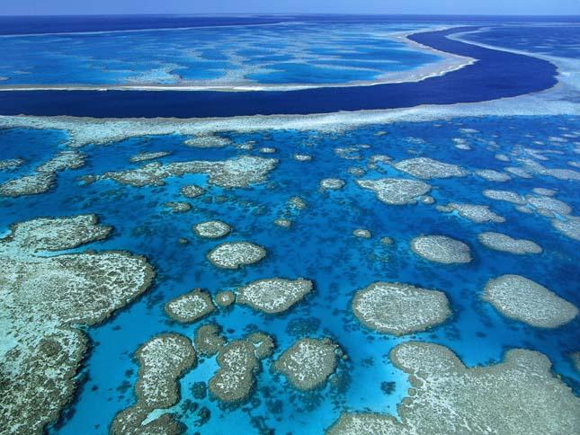 Nagy-korallzátony, Ausztrália