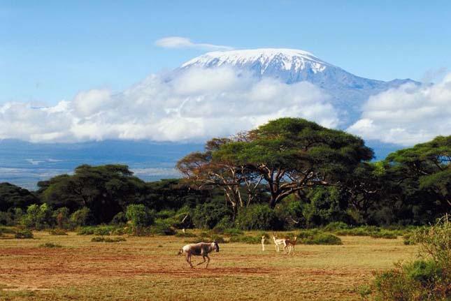 Kilimandzsáró, Tanzánia