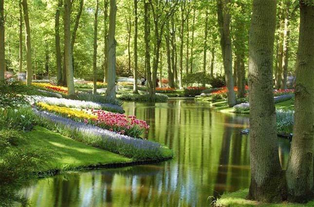 Keukenhof Gardens, Hollandia