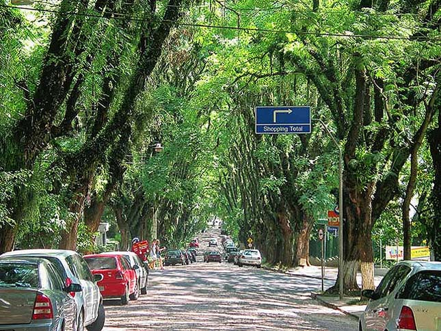 A világ legszebb utcája, Rua Goncalo de Carvalho