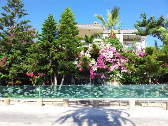 Akvárium kerítés