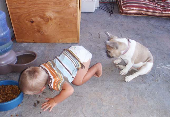 Állatokat utánzó gyerekek