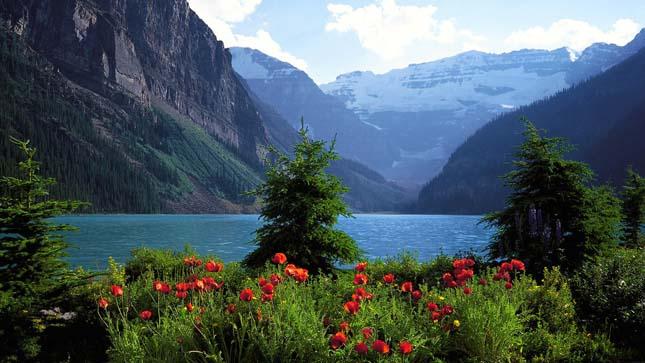 Banff Nemzeti Park