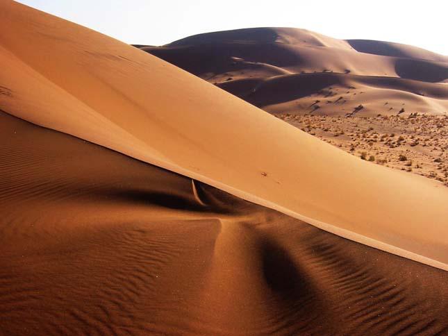 Csontvázpart, Namib-sivatag