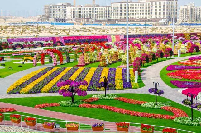 Miracle Garden - Dubai