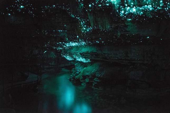 Glowworm-barlang