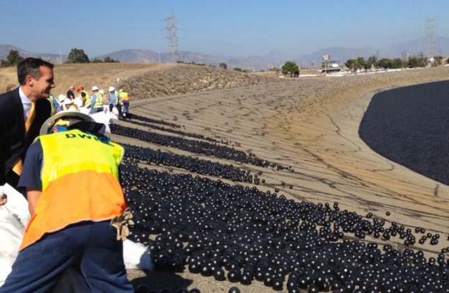 Fekete labdák a víztározóban