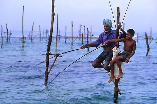Gólyalábas horgászok