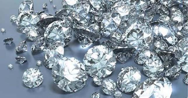 Gyémánt lehet a föld alatt ott, ahol ez a növény él